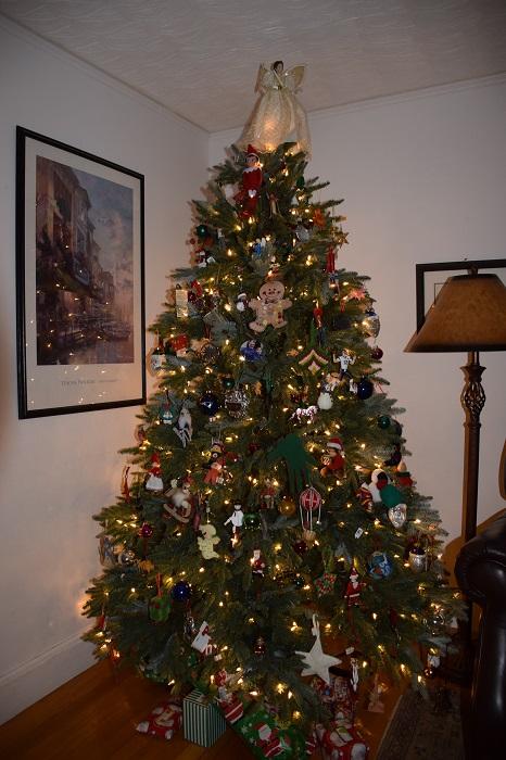 a christmas tree to last a lifetime - How Long Can A Christmas Tree Last